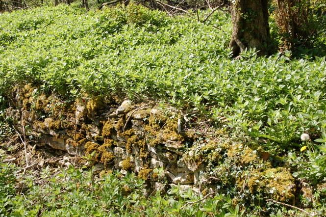 Dry stone wall, alt