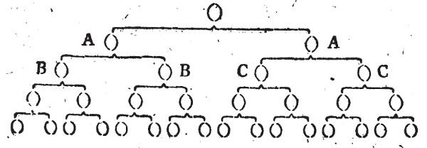 Baumdiagramm zur Hierarchie