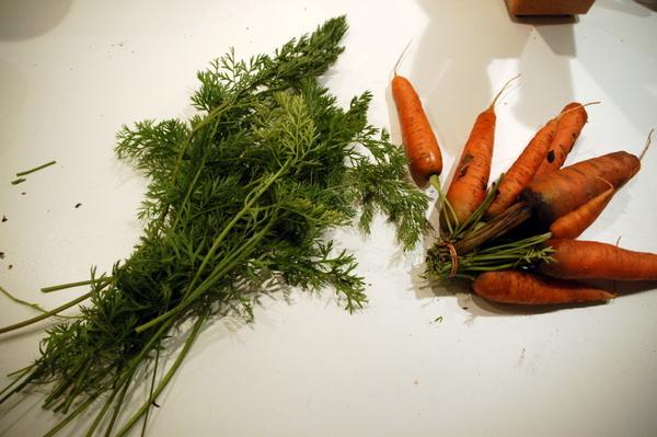 Karotten mit Grün