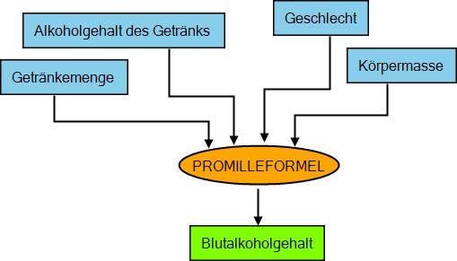 promilleformel2