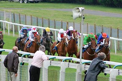 racecourse3.jpg