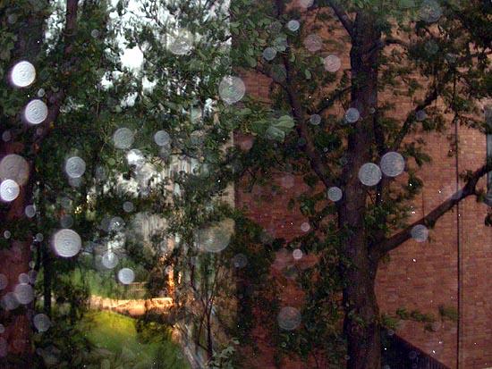 regensturm.jpg